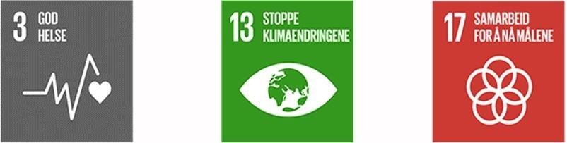 FN - bærekraftsmål
